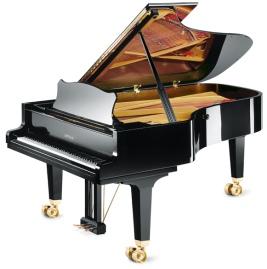 Informe tasación de piano online. Sepa en 24 horas el precio de un piano. Grotrian Concert 225